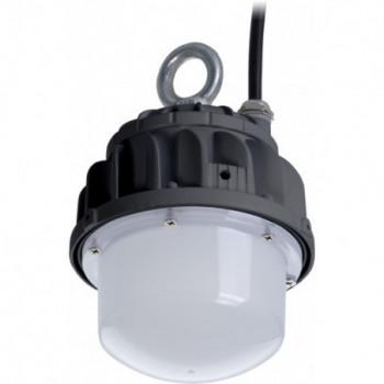 ACORN LED 20 D150 5000K...